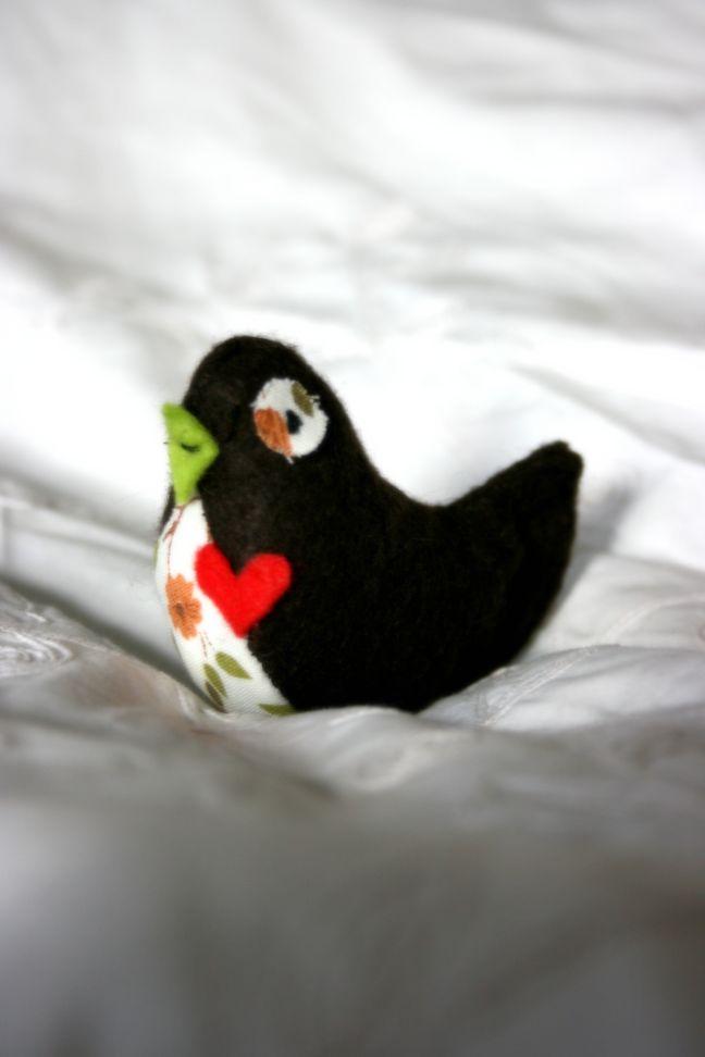 male-lovebird